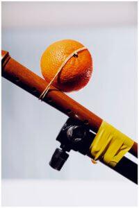 vrucht Joost Termeer