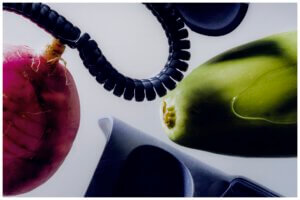 stillife Joost